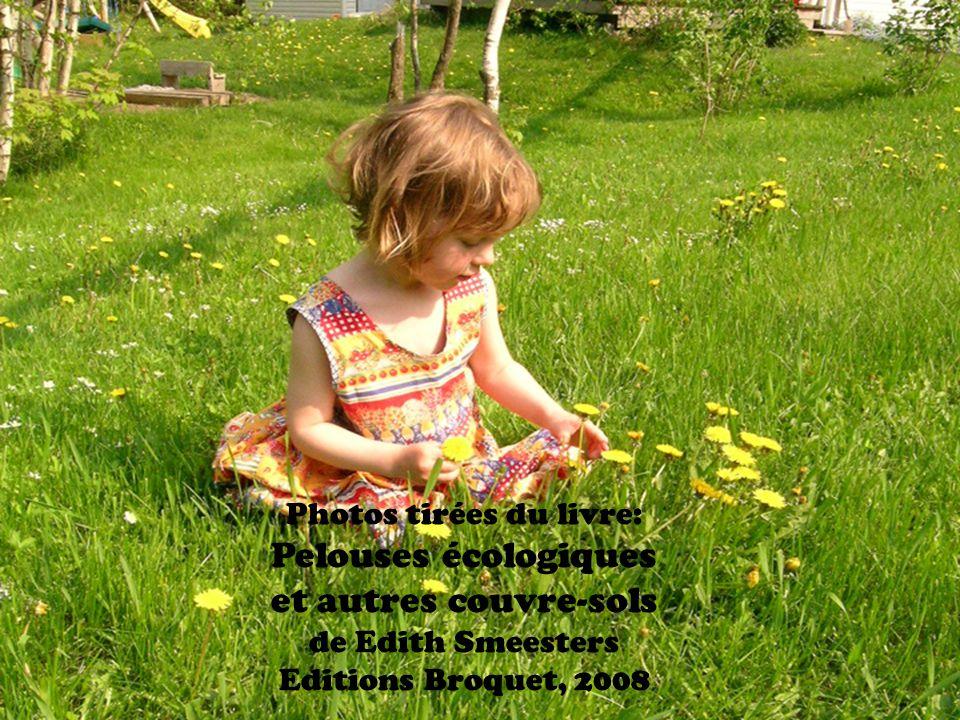 Photos tirées du livre: Pelouses écologiques et autres couvre-sols de Edith Smeesters Editions Broquet, 2008