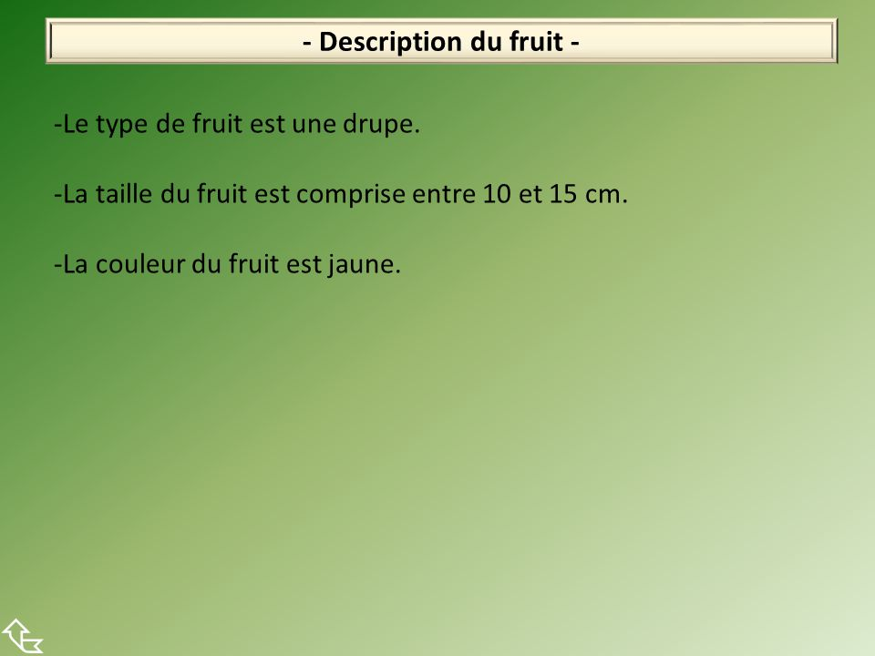 - Description du fruit - -Le type de fruit est une drupe. -La taille du fruit est comprise entre 10 et 15 cm. -La couleur du fruit est jaune.