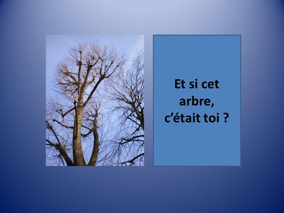 Et si cet arbre, cétait toi ?