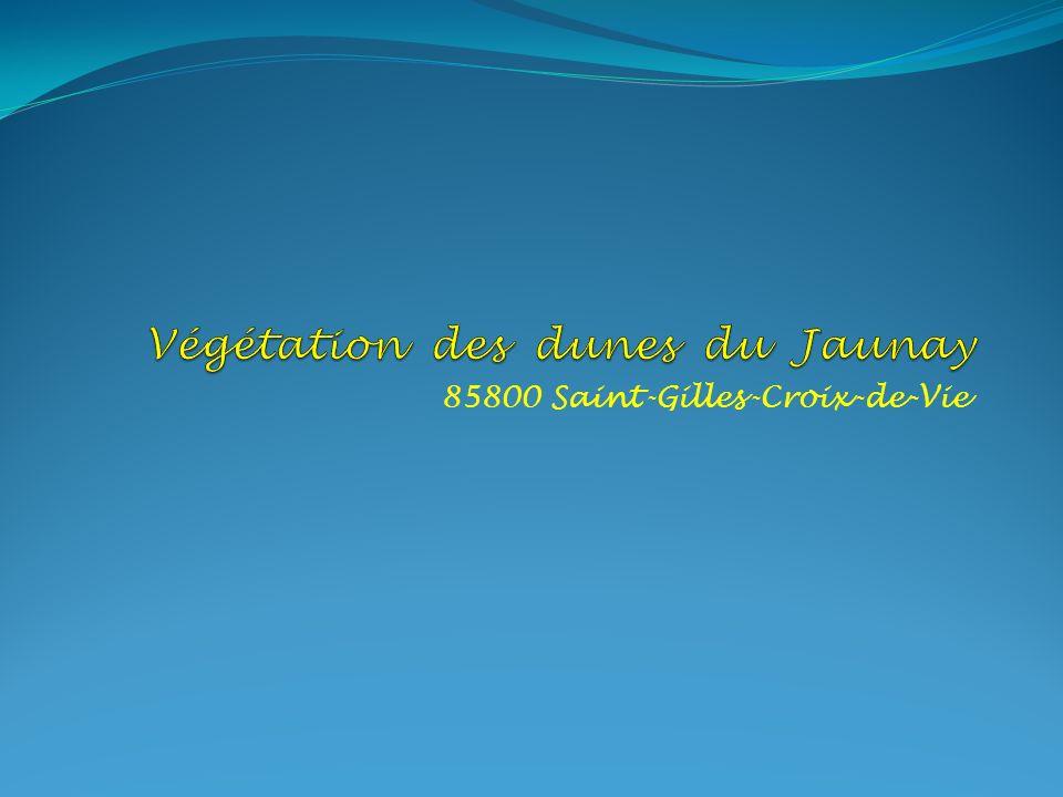 85800 Saint-Gilles-Croix-de-Vie