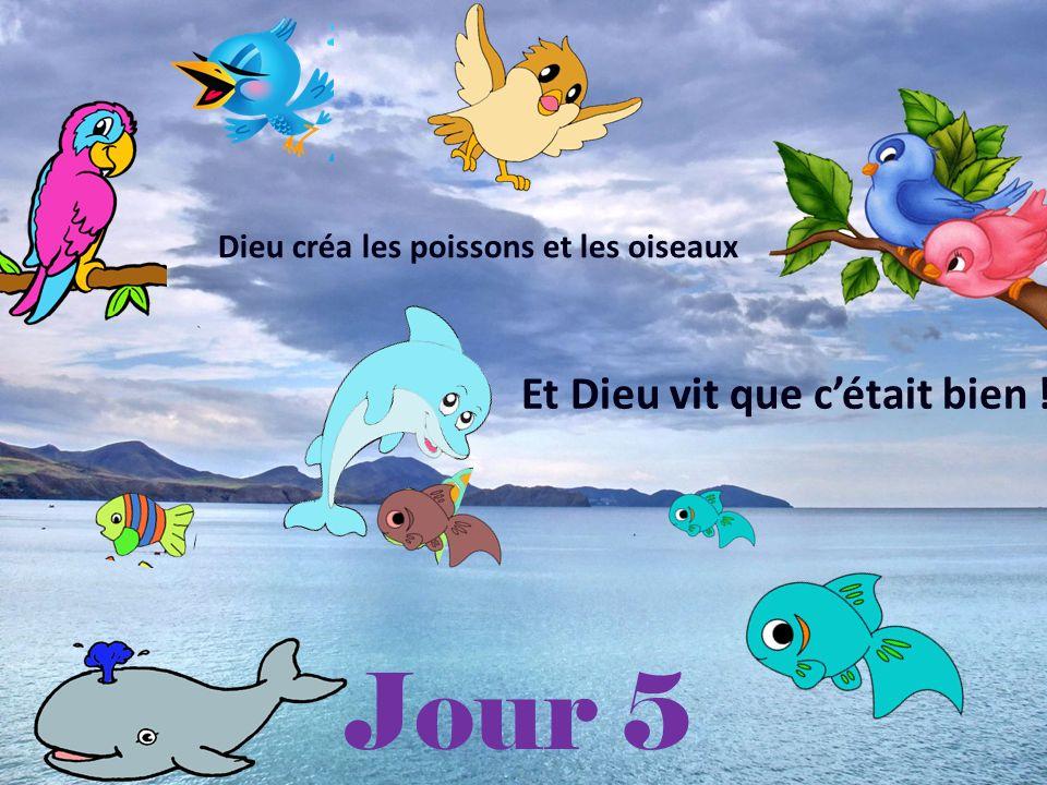 Jour 5 Dieu créa les poissons et les oiseaux Et Dieu vit que cétait bien !