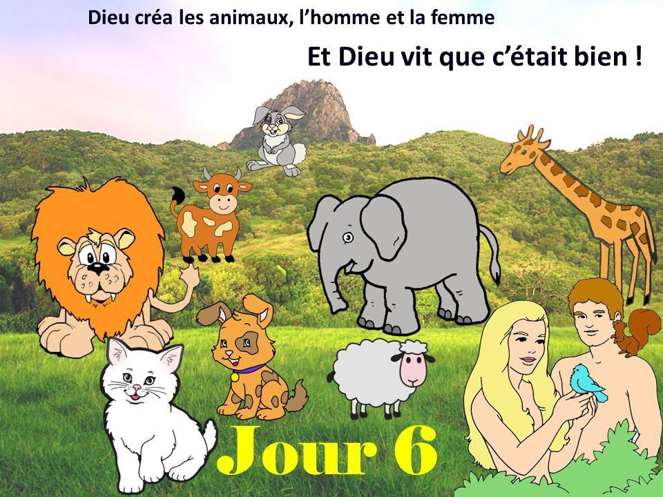 Jour 6 Dieu créa les animaux, lhomme et la femme Et Dieu vit que cétait bien !