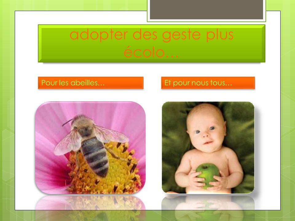 De grave conséquences… la reproduction de 70 à 80 % des plantes à fleurs dans le monde.