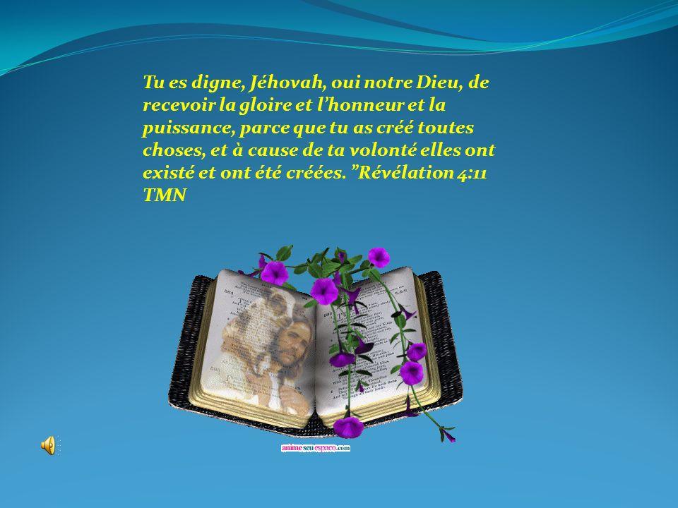 Tu es digne, Jéhovah, oui notre Dieu, de recevoir la gloire et lhonneur et la puissance, parce que tu as créé toutes choses, et à cause de ta volonté