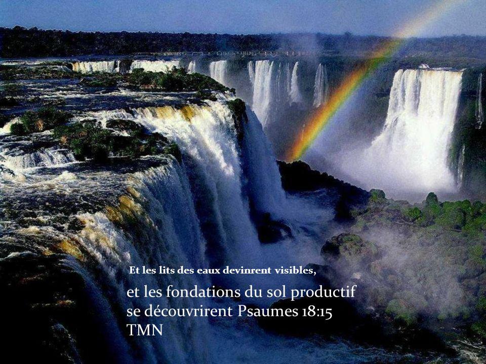 Et les lits des eaux devinrent visibles, et les fondations du sol productif se découvrirent Psaumes 18:15 TMN