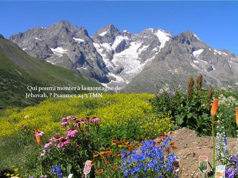 Qui pourra monter à la montagne de Jéhovah, ? Psaumes 24:3 TMN