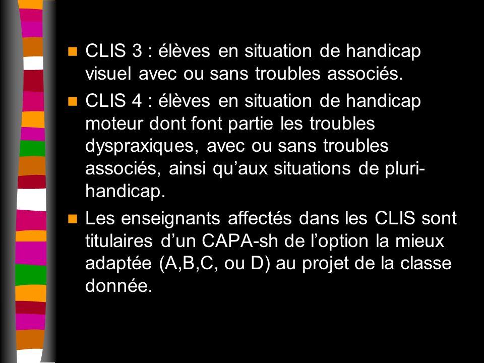 CLIS 3 : élèves en situation de handicap visuel avec ou sans troubles associés.