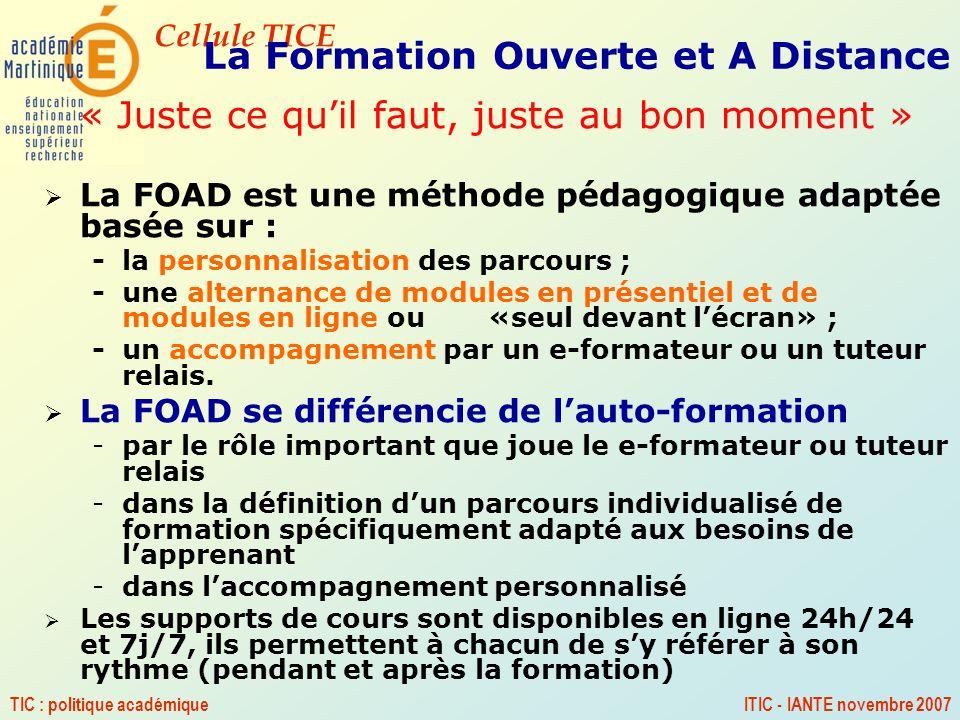 Cellule TICE TIC : politique académiqueITIC - IANTE novembre 2007 La Formation Ouverte et A Distance « Juste ce quil faut, juste au bon moment » La FO