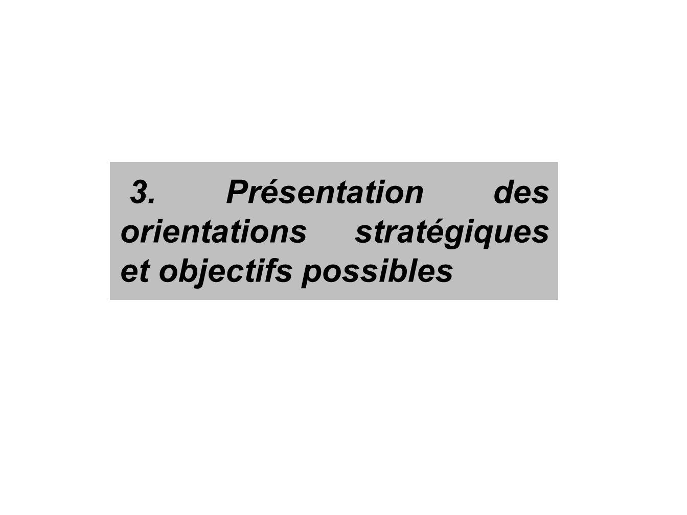 3. Présentation des orientations stratégiques et objectifs possibles
