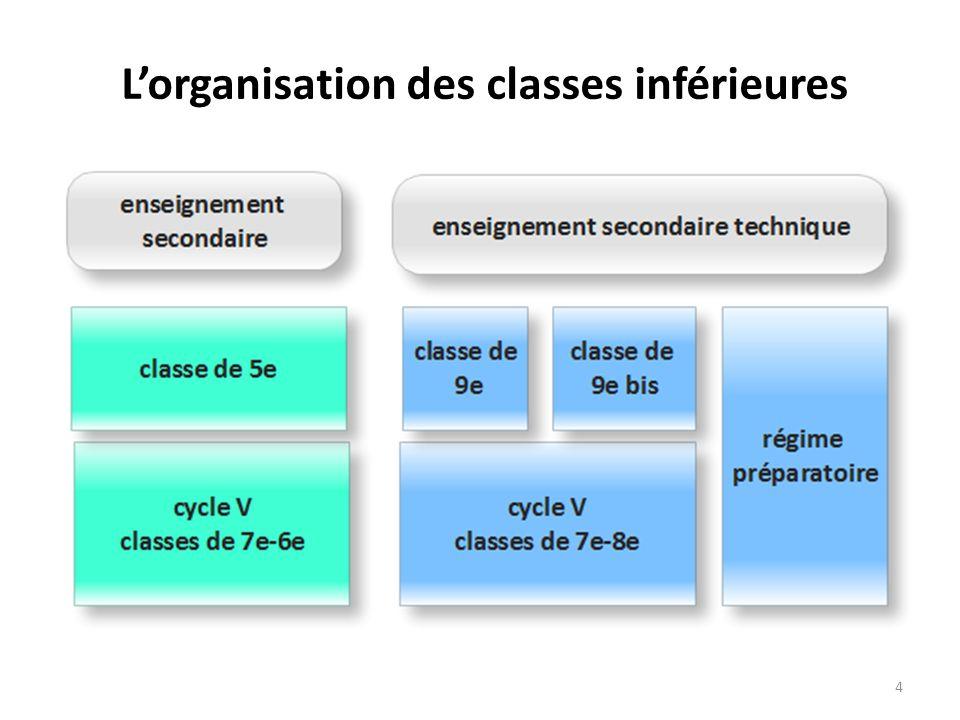 Lorganisation des classes inférieures 4