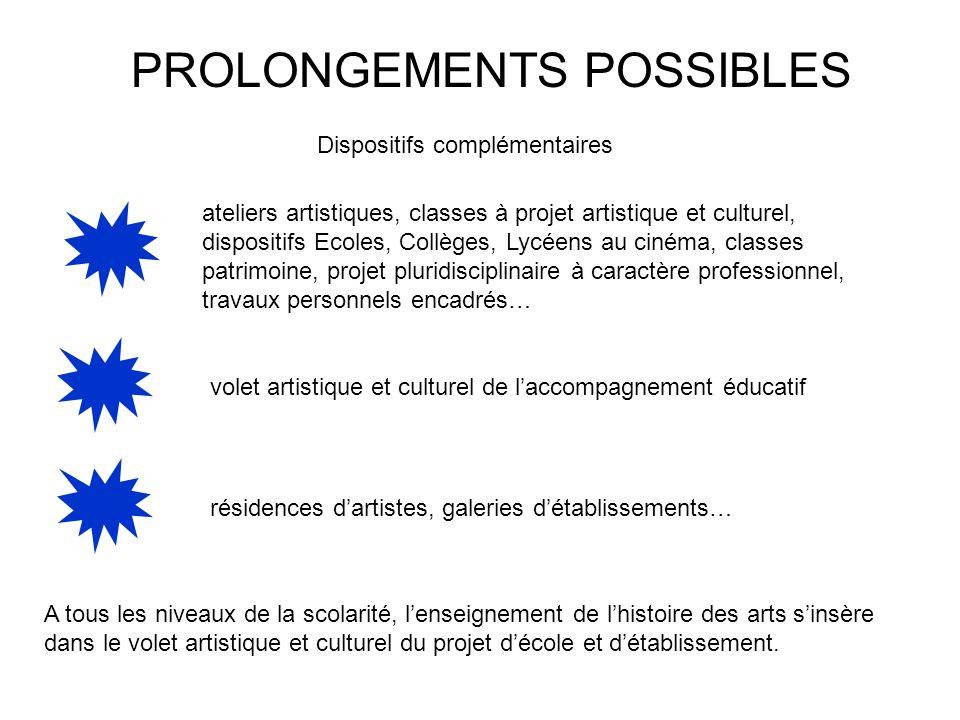 PROLONGEMENTS POSSIBLES Dispositifs complémentaires ateliers artistiques, classes à projet artistique et culturel, dispositifs Ecoles, Collèges, Lycée