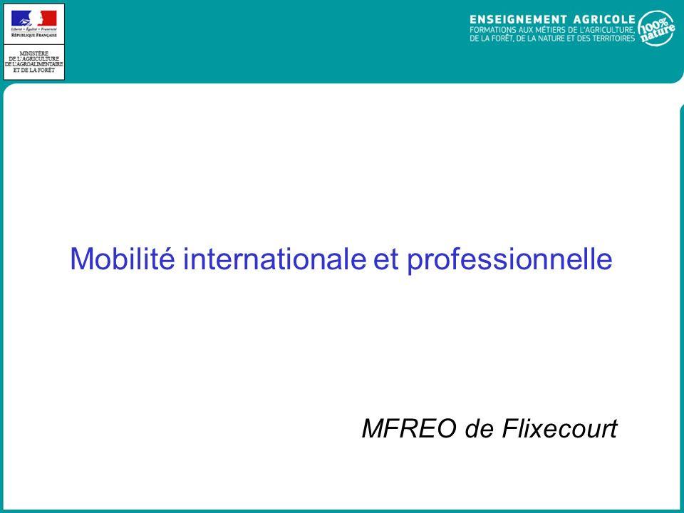 Mobilité internationale et professionnelle MFREO de Flixecourt