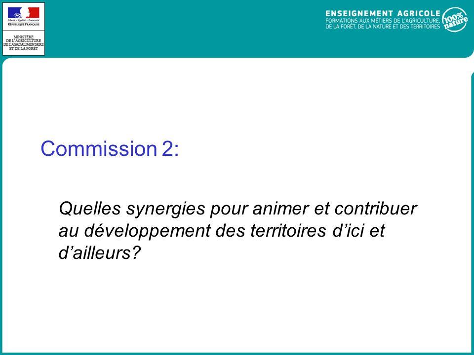 Commission 2: Quelles synergies pour animer et contribuer au développement des territoires dici et dailleurs?