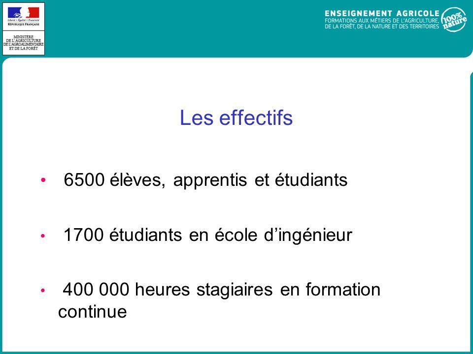 Les effectifs 6500 élèves, apprentis et étudiants 1700 étudiants en école dingénieur 400 000 heures stagiaires en formation continue