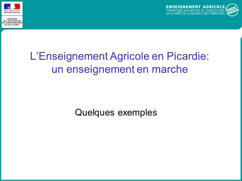 LEnseignement Agricole en Picardie: un enseignement en marche Quelques exemples