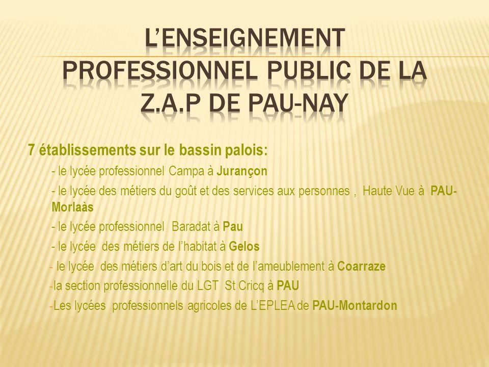 7 établissements sur le bassin palois: - le lycée professionnel Campa à Jurançon - le lycée des métiers du goût et des services aux personnes, Haute V