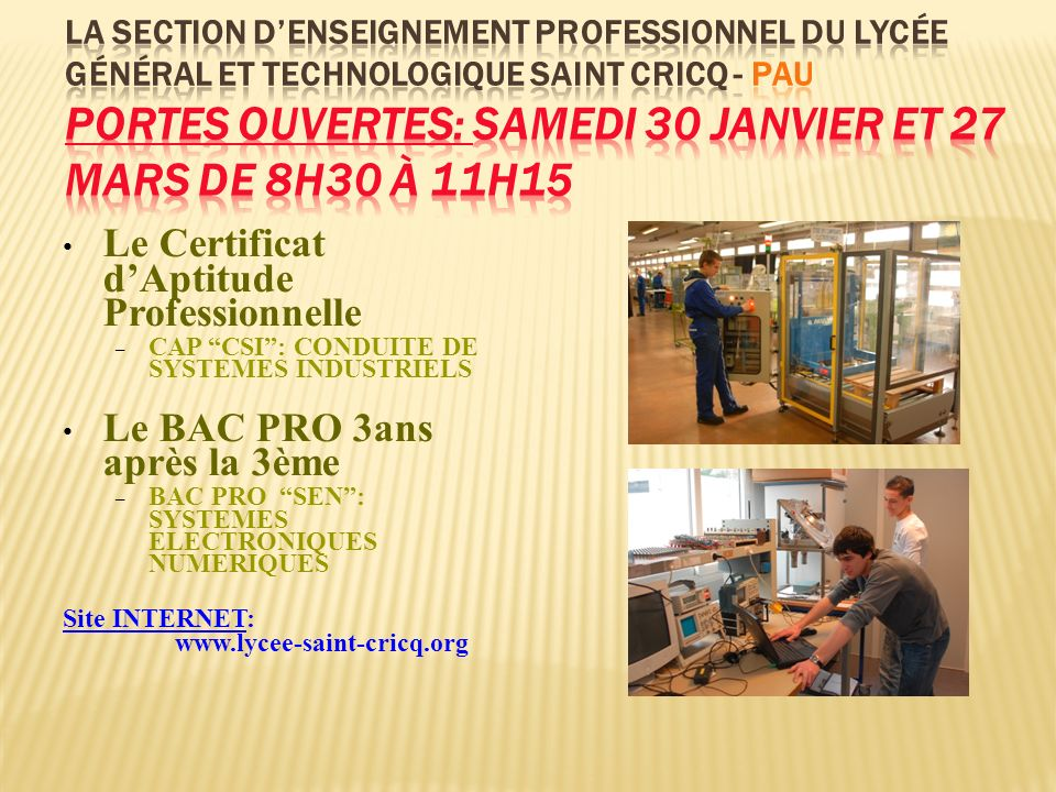 Le Certificat dAptitude Professionnelle – CAP CSI: CONDUITE DE SYSTEMES INDUSTRIELS Le BAC PRO 3ans après la 3ème – BAC PRO SEN: SYSTEMES ELECTRONIQUE