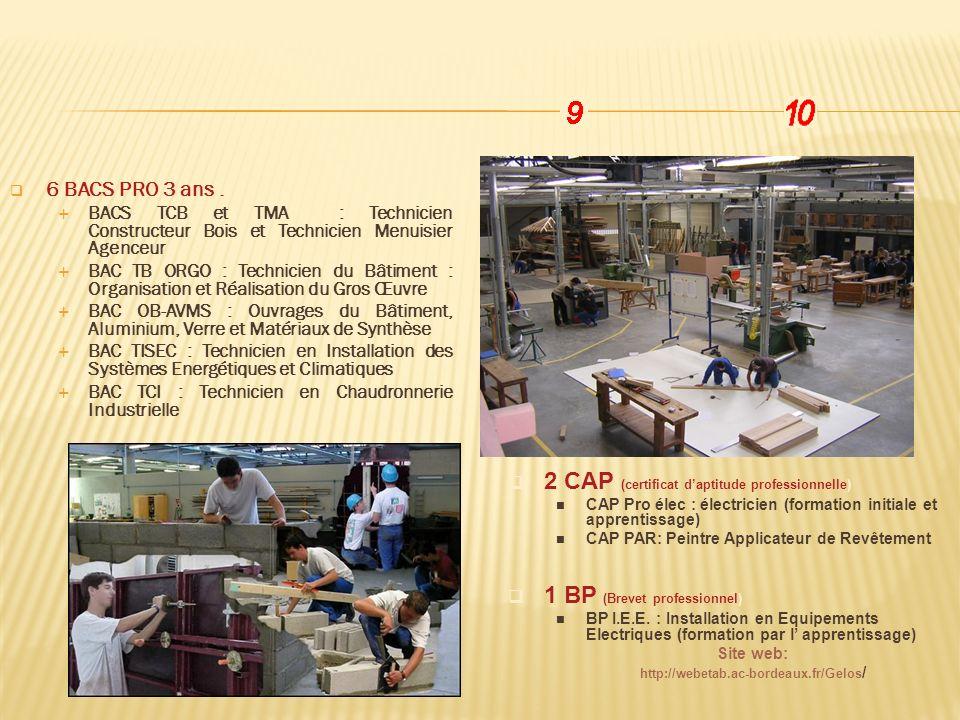 6 BACS PRO 3 ans. BACS TCB et TMA : Technicien Constructeur Bois et Technicien Menuisier Agenceur BAC TB ORGO : Technicien du Bâtiment : Organisation