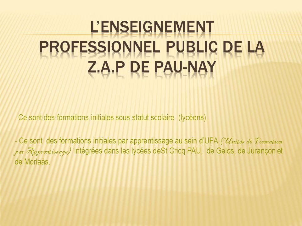 Le Certificat dAptitude Professionnelle – CAP CSI: CONDUITE DE SYSTEMES INDUSTRIELS Le BAC PRO 3ans après la 3ème – BAC PRO SEN: SYSTEMES ELECTRONIQUES NUMERIQUES Site INTERNET: www.lycee-saint-cricq.org