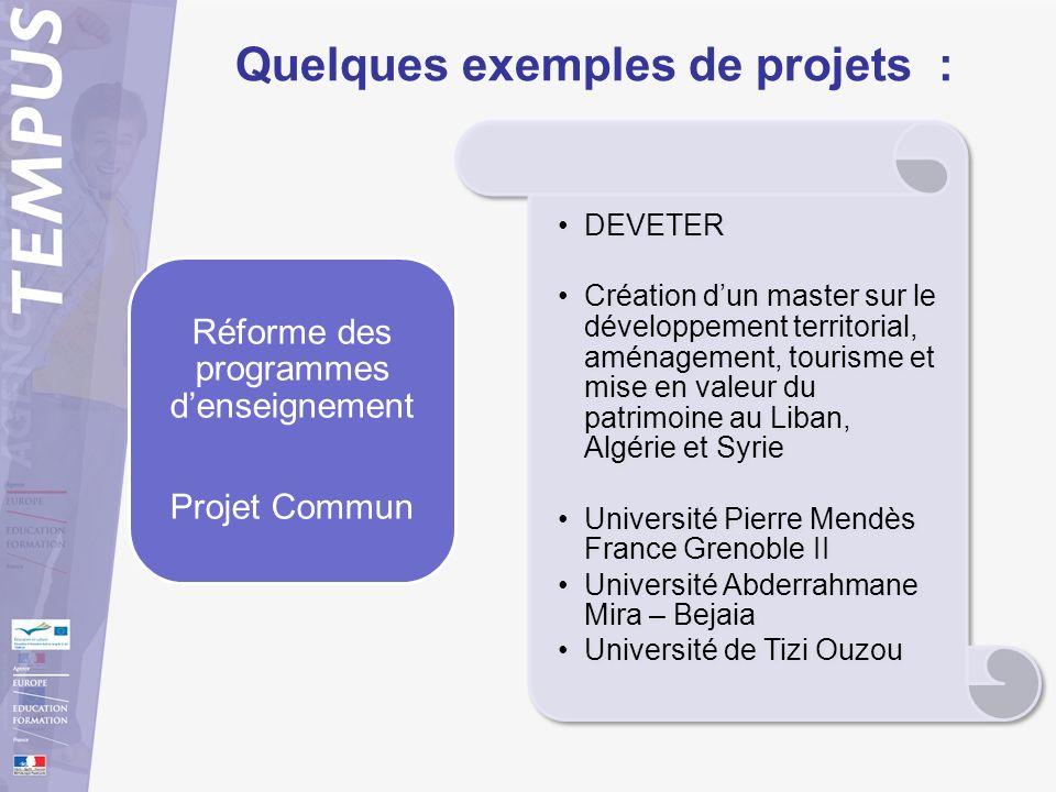 Quelques exemples de projets : DEVETER Création dun master sur le développement territorial, aménagement, tourisme et mise en valeur du patrimoine au