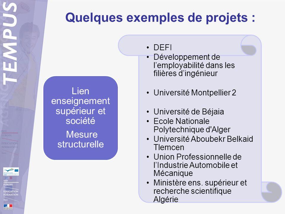 Quelques exemples de projets : DEFI Développement de lemployabilité dans les filières dingénieur Université Montpellier 2 Université de Béjaia Ecole N