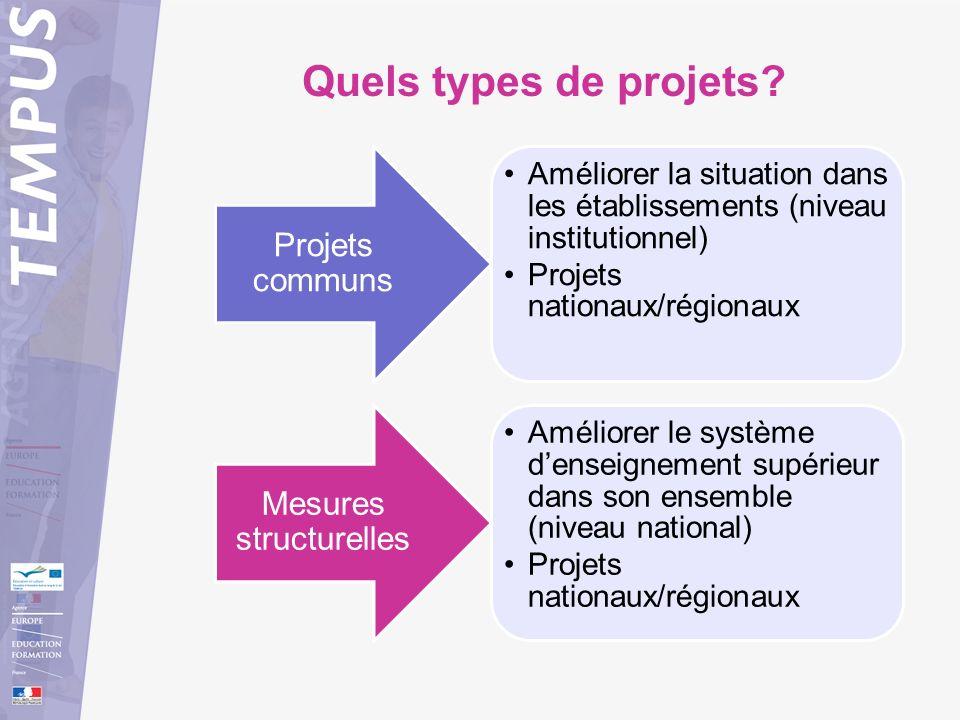 Quels types de projets? Améliorer la situation dans les établissements (niveau institutionnel) Projets nationaux/régionaux Projets communs Améliorer l