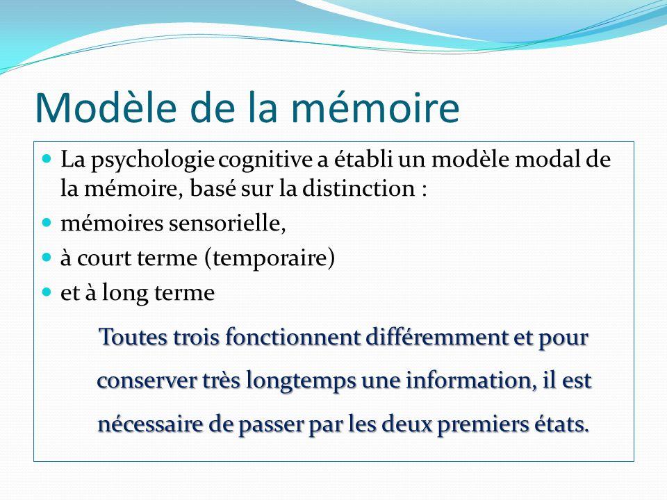 Modèle de la mémoire La psychologie cognitive a établi un modèle modal de la mémoire, basé sur la distinction : mémoires sensorielle, à court terme (t