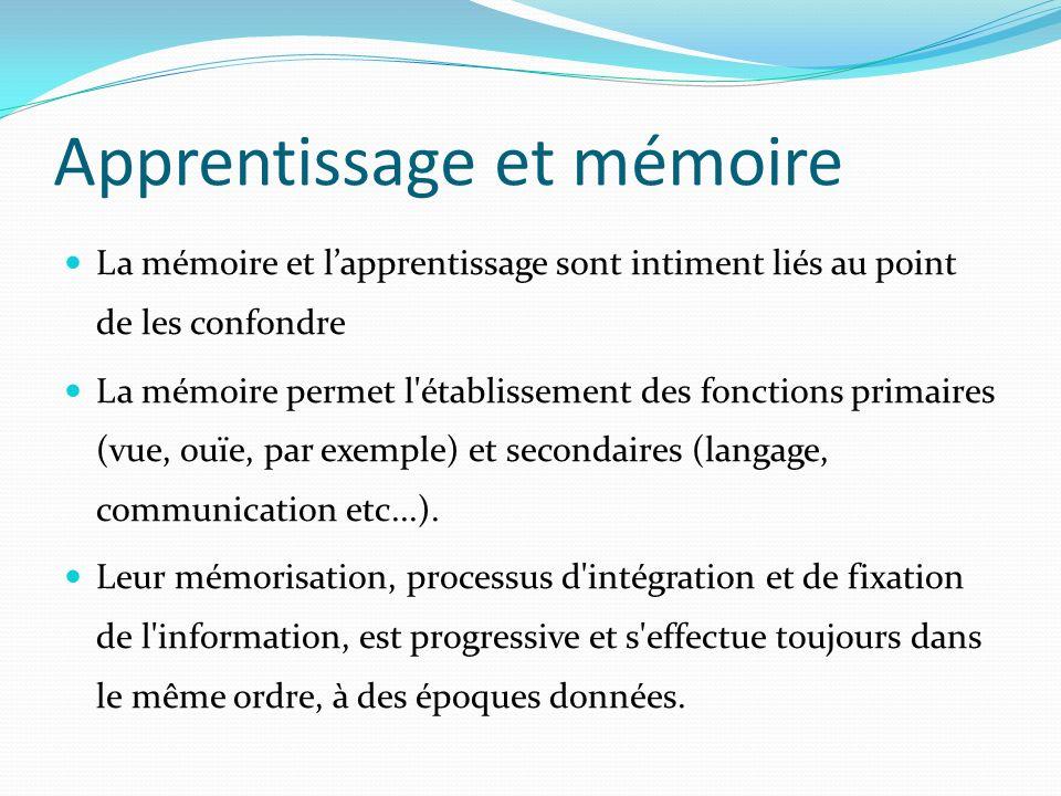 Apprentissage et mémoire La mémoire et lapprentissage sont intiment liés au point de les confondre La mémoire permet l'établissement des fonctions pri