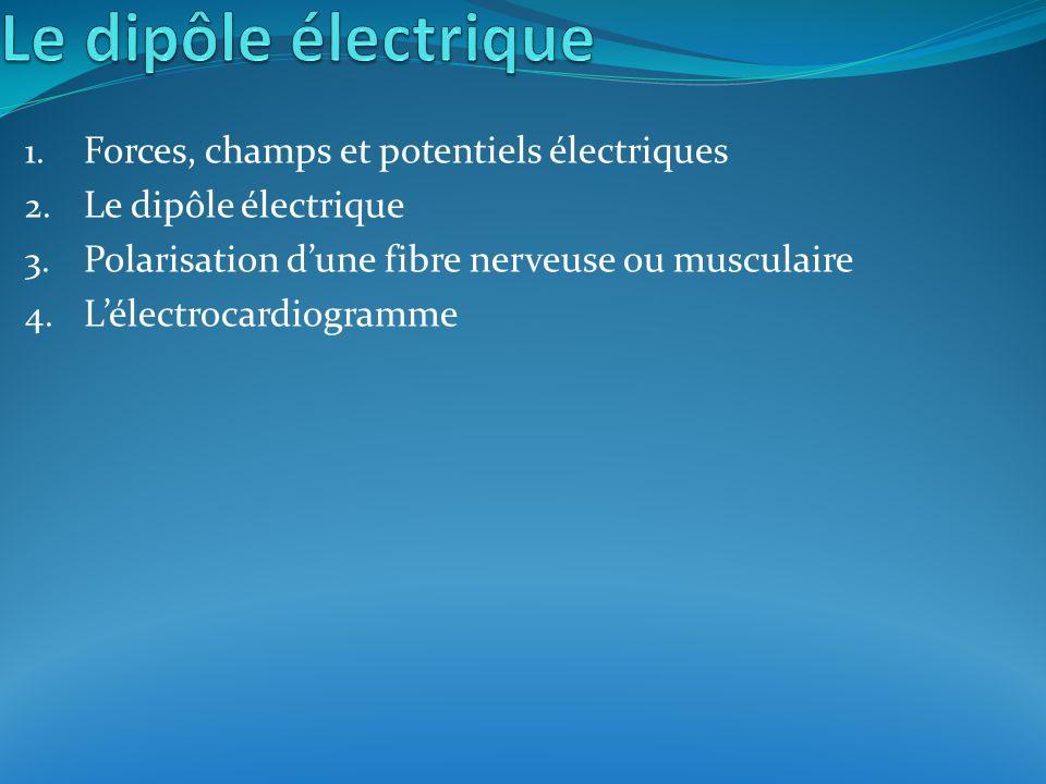 1. Forces, champs et potentiels électriques 2. Le dipôle électrique 3. Polarisation dune fibre nerveuse ou musculaire 4. Lélectrocardiogramme