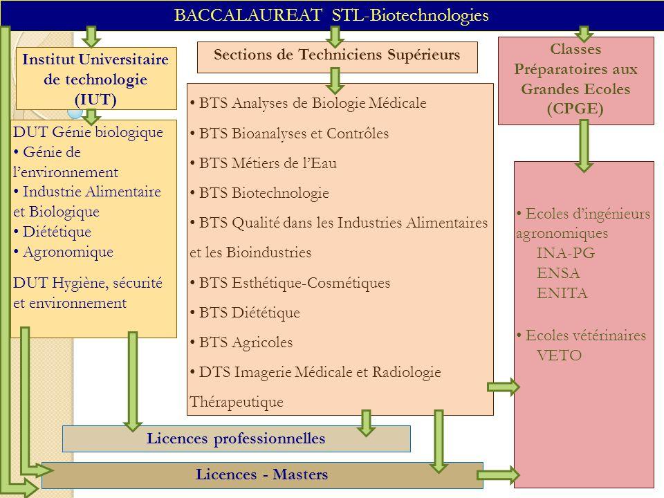 BACCALAUREAT STL-Biotechnologies Institut Universitaire de technologie (IUT) Classes Préparatoires aux Grandes Ecoles (CPGE) DUT Génie biologique Géni
