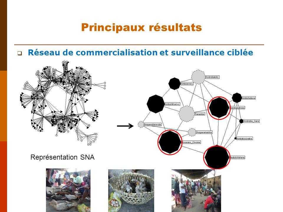 Réseau de commercialisation et surveillance ciblée Principaux résultats Représentation SNA