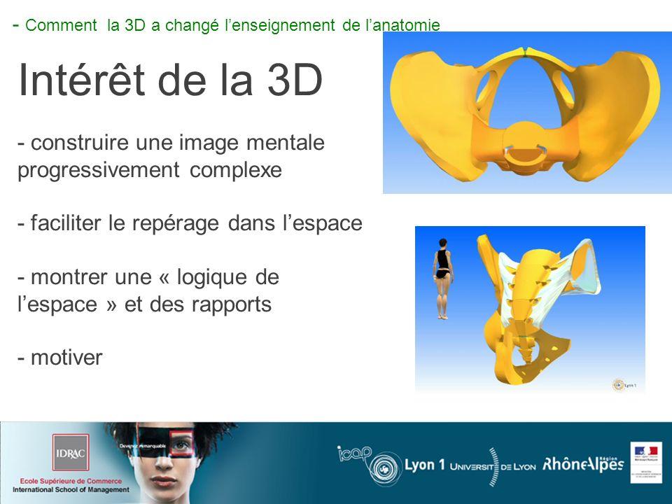 I- Comment la 3d à changé lenseignement de lanatomie - Comment la 3D a changé lenseignement de lanatomie Intérêt de la 3D - construire une image mentale progressivement complexe - faciliter le repérage dans lespace - montrer une « logique de lespace » et des rapports - motiver