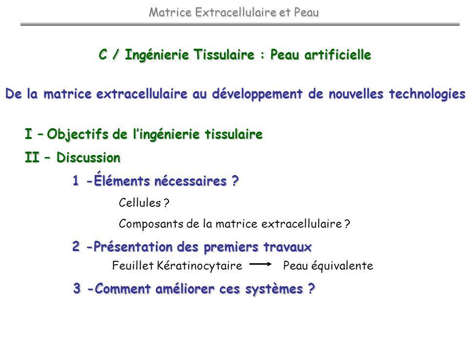 C / Ingénierie Tissulaire : Peau artificielle C / Ingénierie Tissulaire : Peau artificielle Matrice Extracellulaire et Peau De la matrice extracellula