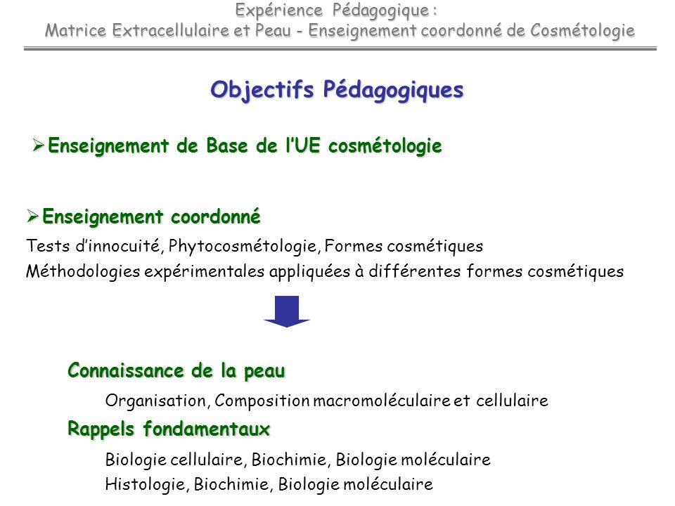 Expérience Pédagogique : Matrice Extracellulaire et Peau - Enseignement coordonné de Cosmétologie Matrice Extracellulaire et Peau - Enseignement coord