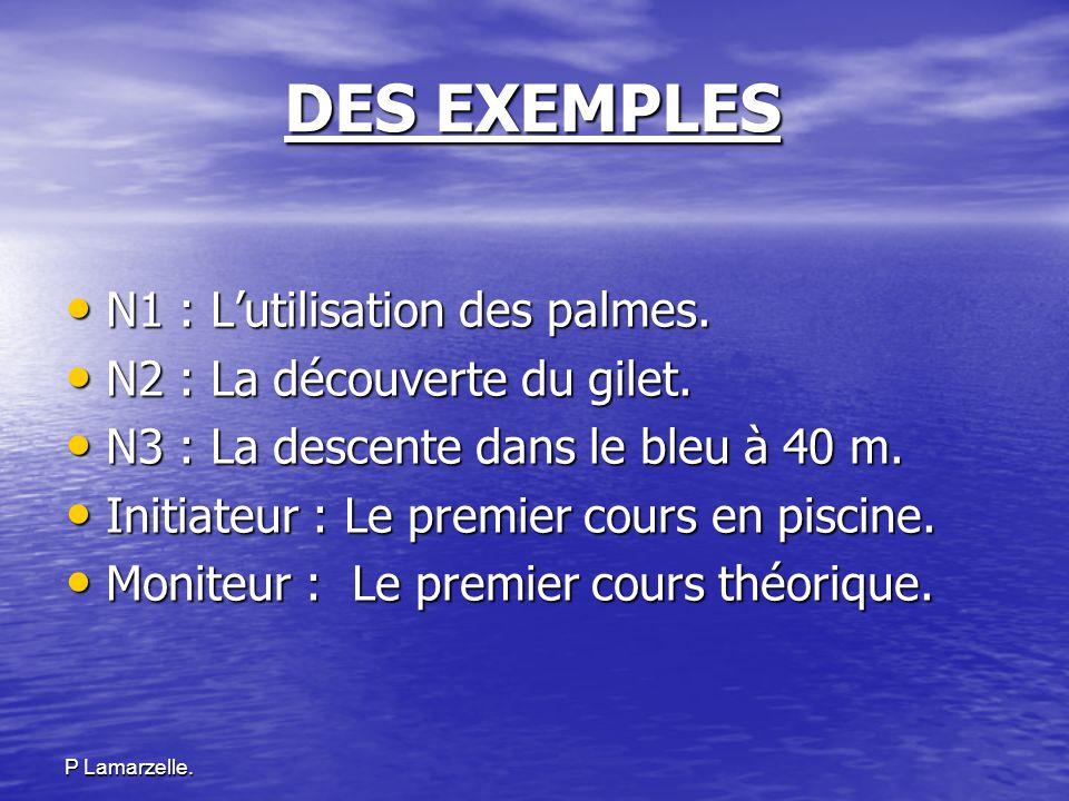 P Lamarzelle. DES EXEMPLES N1 : Lutilisation des palmes. N1 : Lutilisation des palmes. N2 : La découverte du gilet. N2 : La découverte du gilet. N3 :