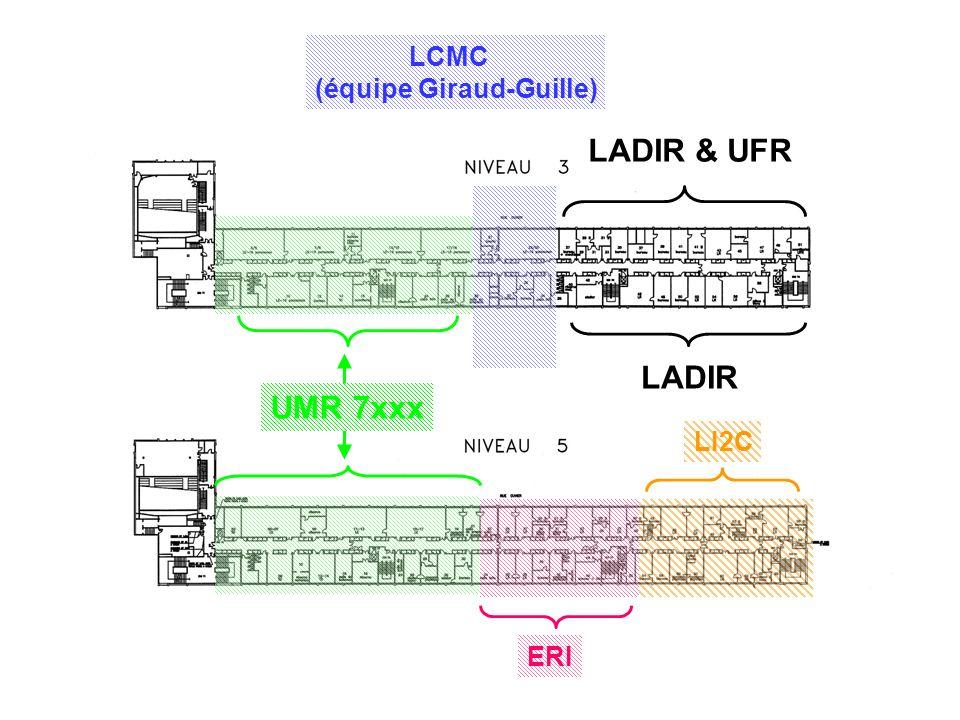 LCMC (équipe Giraud-Guille) LADIR LADIR & UFR LI2C ERI UMR 7xxx