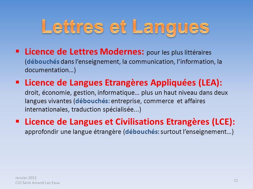 Janvier 2011 CIO Saint Amand Les Eaux Licence de Lettres Modernes: pour les plus littéraires (débouchés dans lenseignement, la communication, linforma