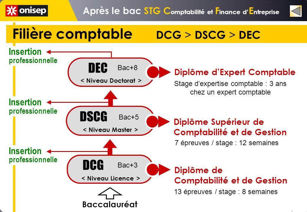Filière comptable DCG > DSCG > DEC DSCG DEC Stage dexpertise comptable : 3 ans chez un expert comptable 7 épreuves / stage : 12 semaines DCG Diplôme dExpert Comptable Diplôme Supérieur de Comptabilité et de Gestion Insertion professionnelle Insertion professionnelle Insertion professionnelle o o o Bac+8 Bac+5 Bac+3 Baccalauréat 13 épreuves / stage : 8 semaines Diplôme de Comptabilité et de Gestion Après le bac STG C omptabilité et F inance d E ntreprise