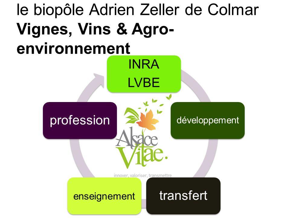 Transfert INRA LVBE développement transfert enseignement profession le biopôle Adrien Zeller de Colmar Vignes, Vins & Agro- environnement