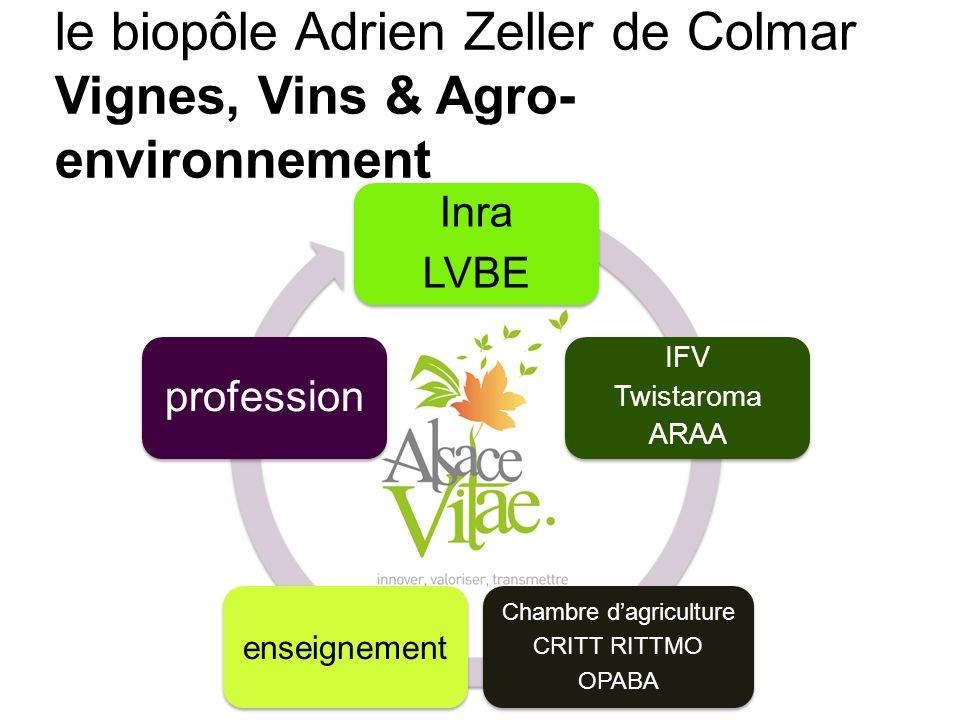 Transfert Inra LVBE IFV Twistaroma ARAA Chambre dagriculture CRITT RITTMO OPABA enseignement profession le biopôle Adrien Zeller de Colmar Vignes, Vin