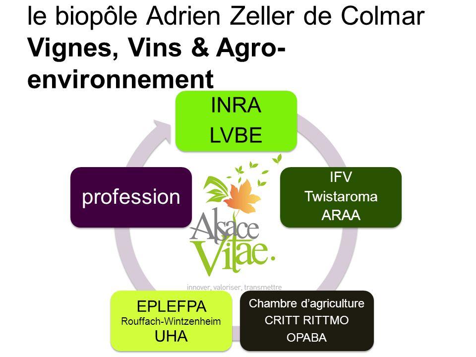 Transfert INRA LVBE IFV Twistaroma ARAA Chambre dagriculture CRITT RITTMO OPABA EPLEFPA Rouffach-Wintzenheim UHA profession le biopôle Adrien Zeller de Colmar Vignes, Vins & Agro- environnement