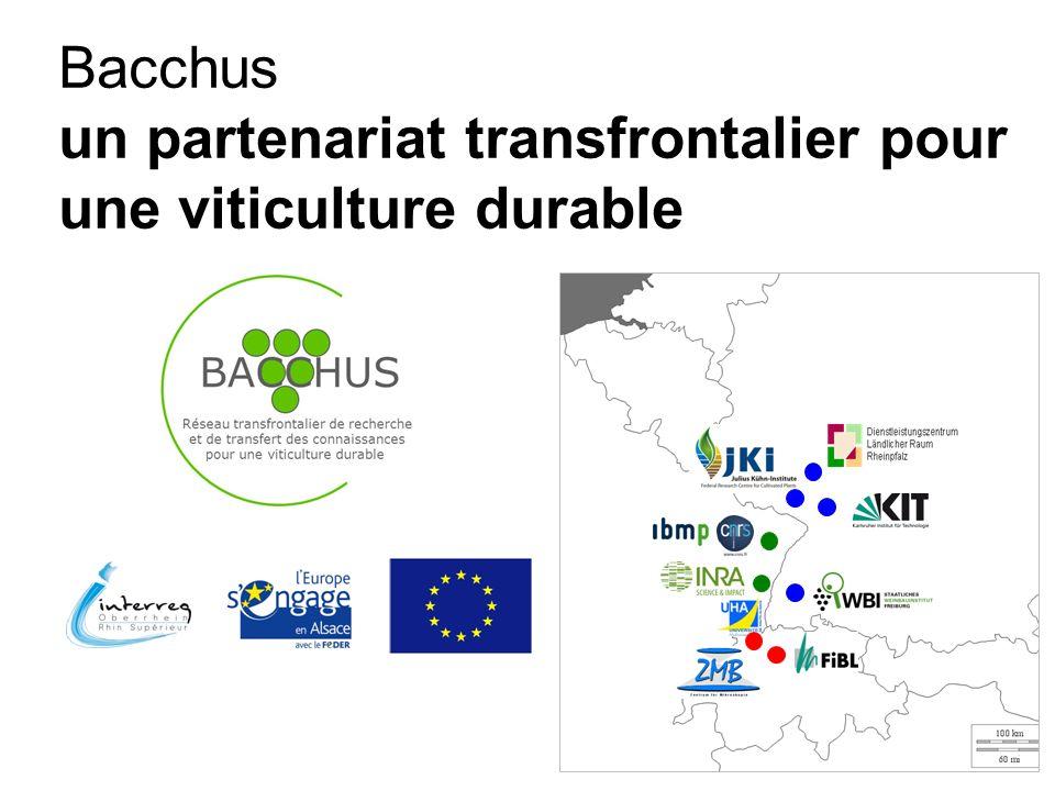 Bacchus un partenariat transfrontalier pour une viticulture durable