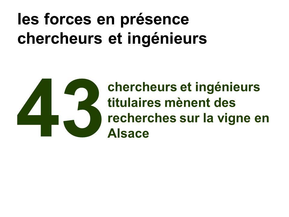 43 chercheurs et ingénieurs titulaires mènent des recherches sur la vigne en Alsace les forces en présence chercheurs et ingénieurs