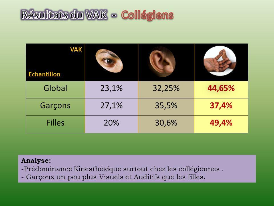 VAK Echantillon (filles) Collégiennes (3 ème ) 20%30,6%49,4% Lycéennes (2 nde ) 26,9%38,5%34,6% Etudiantes (IESG) (1 ère année de licence) 28%36,55%35,45% Etudiantes (IUT TC) (2 ème année de DUT) 35,9% 28,2% Enseignantes (IUFC) (Adultes en formation) 58,3%16,7%25% Analyse: -Diminution des Kinesthésiques en fonction du niveau détude.