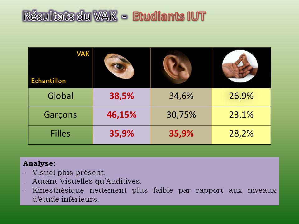 Global28,4%34,2%37,4% Garçons29%30,65%40,35% Filles28%36,6%35,5% Analyse: -Kinesthésique le plus significatif. -Auditives plus présentes. -Visuel moin