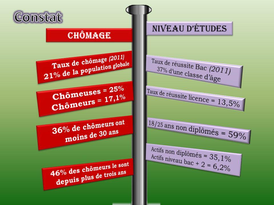 Guyane Comparaison de la structure démographique entre la Métropole et la Guyane (2010) métropole 0 – 20 ans 44% 20 – 64 ans 52% 65 ans et plus 4% 0 –