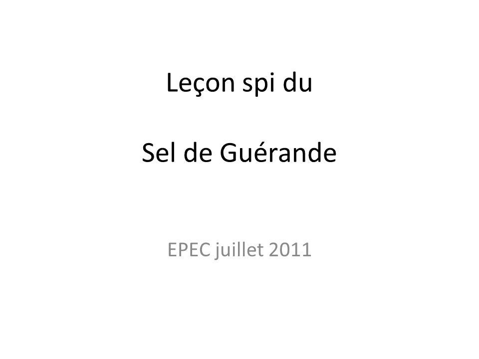 Leçon spi du Sel de Guérande EPEC juillet 2011