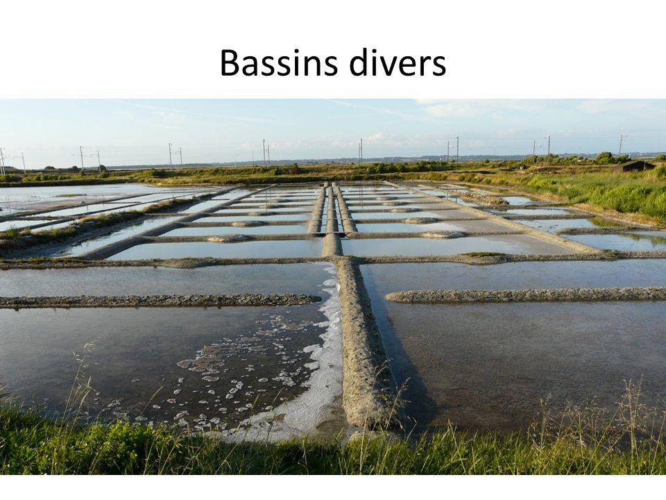 Bassins divers
