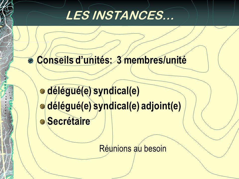 LES INSTANCES… Conseils dunités: 3 membres/unité délégué(e) syndical(e) délégué(e) syndical(e) adjoint(e) Secrétaire Réunions au besoin
