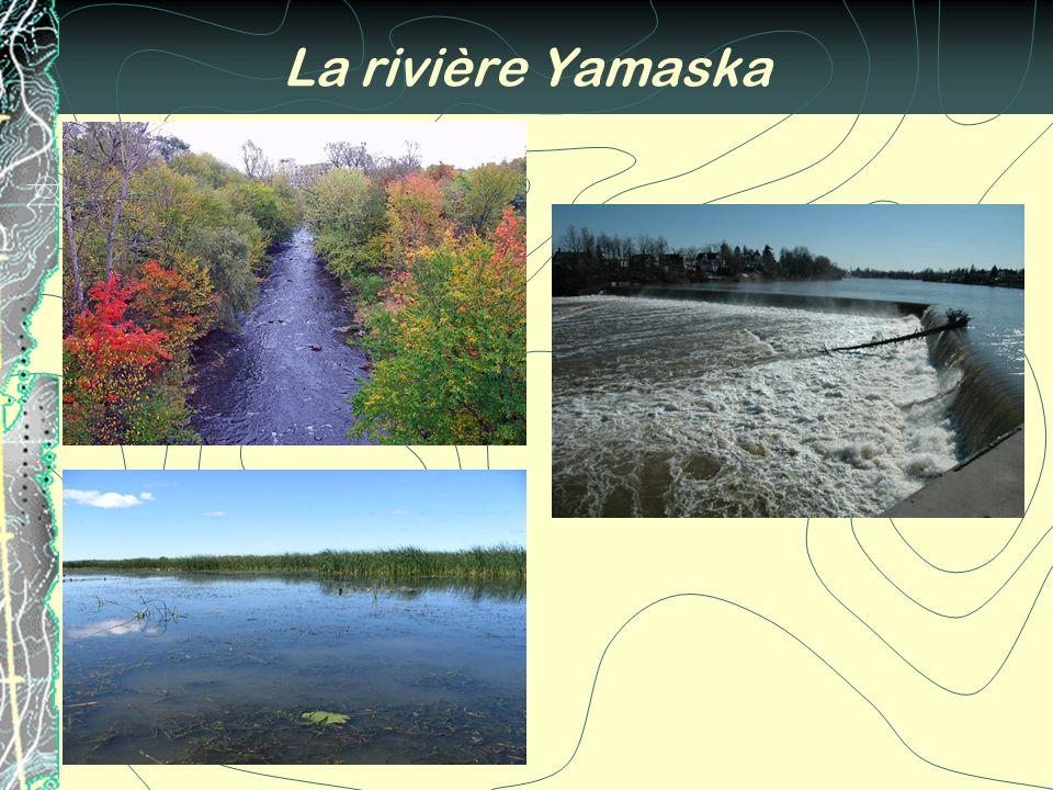 La rivière Yamaska